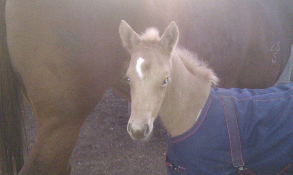BB so cute as a baby, loved her little rug